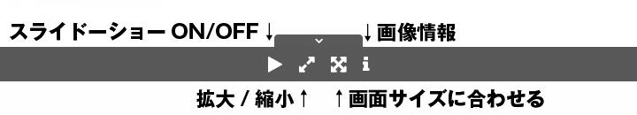 画像の表示方法